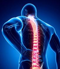 Spinal Cerrahi